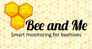 Bee and Me logo